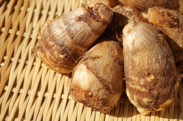 押さえておきたいおきたいサトイモの害虫!サトイモ栽培5つの害虫とその防除方法