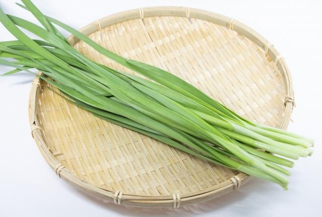 【ニラ大全】ニラの旬はいつ?日本で食べられているニラの種類も紹介!