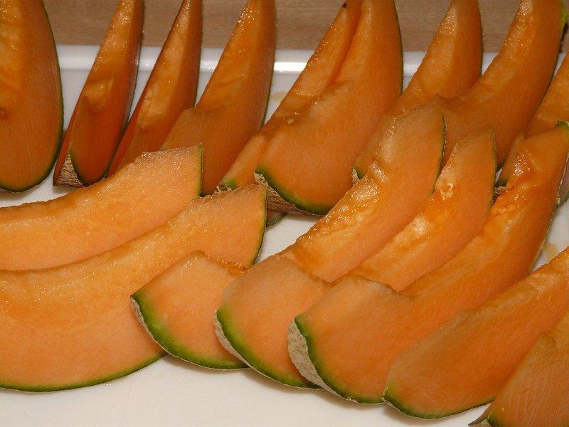 メロンの栽培レシピ 美味しいメロンを育てるポイントを解説!