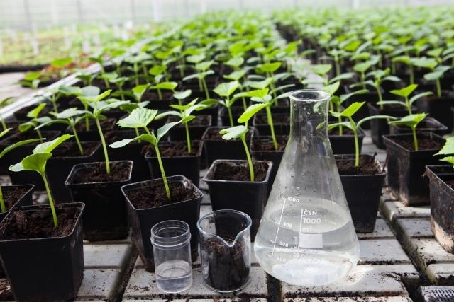 肥料の三要素NPKって?肥料を科学的に解説