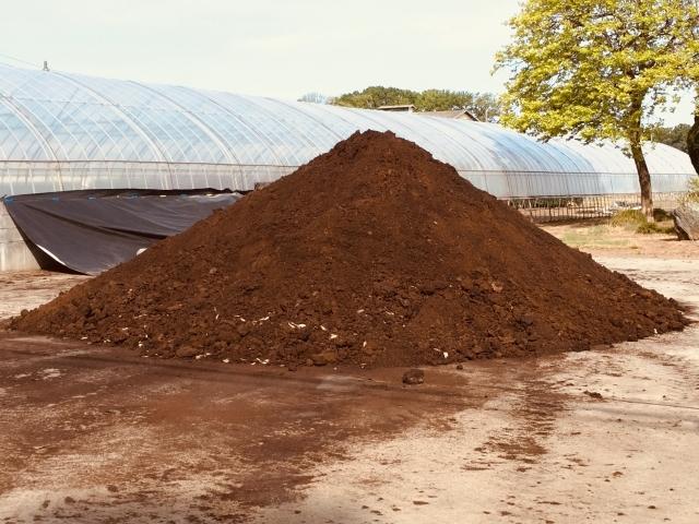 肥料焼けってなに?肥料の過剰障害