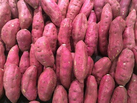 美味しいサツマイモを栽培するために!知っておくべきサツマイモ栽培4つの病気
