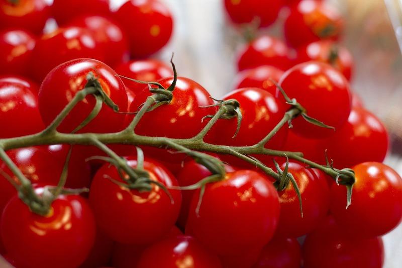 ミニトマト栽培 鈴なりのきれいな実を付けさせる方法