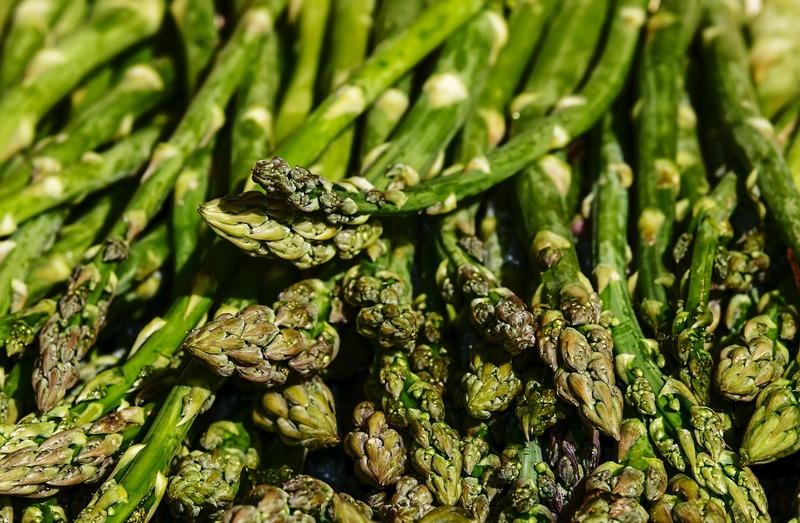 美味しいアスパラガスを育てよう!アスパラガスの栽培方法:畑の準備から収穫まで